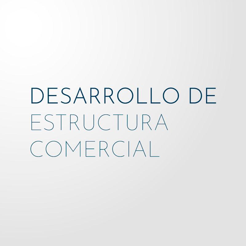 Desarrollo de Estructura Comercial
